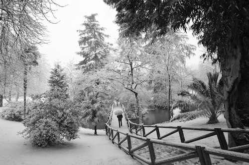 Madrid's Retiro Park in the snow